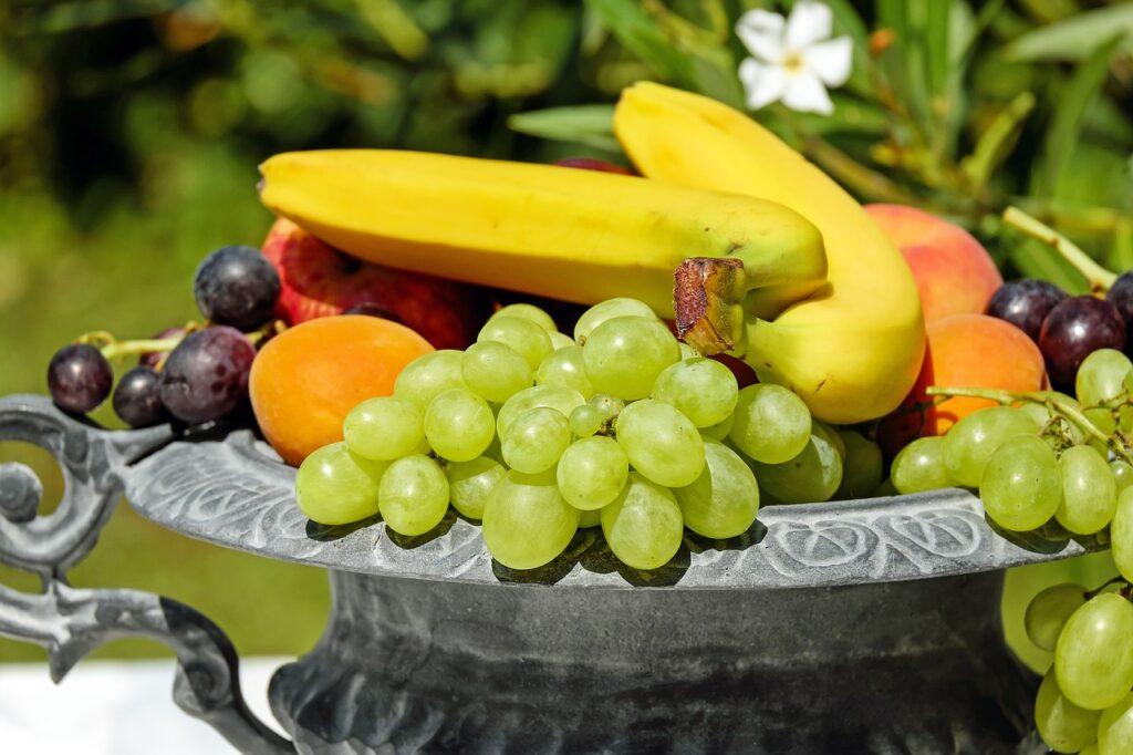 fruit bowl, shell, fruit
